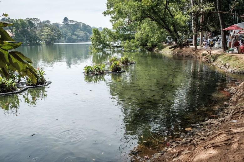 Sri Lanka Kandy 23