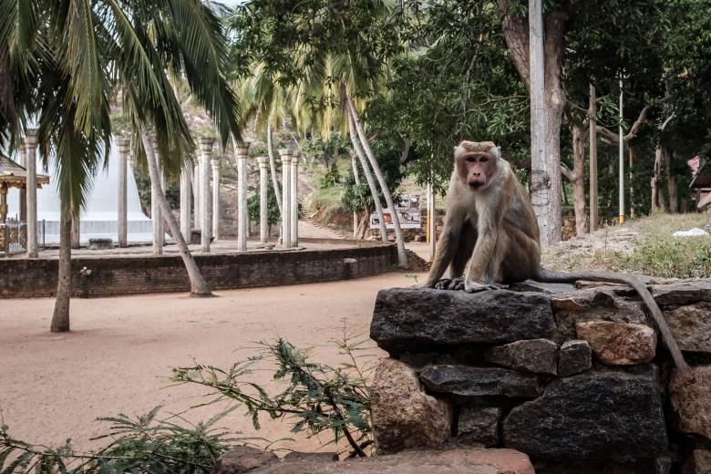 Sri Lanka Mihintale 22