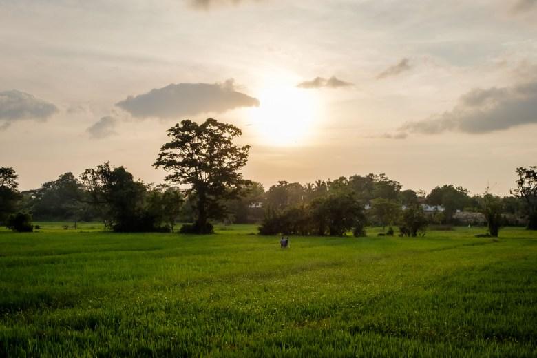 Sri Lanka Mihintale 34