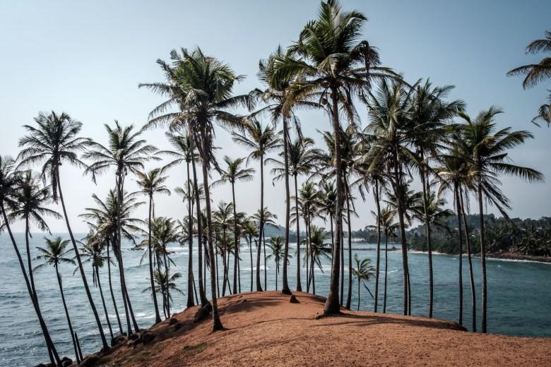 Sri Lanka Mirissa 41