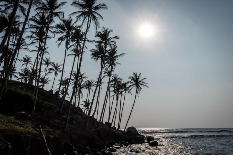 Sri Lanka Mirissa 47