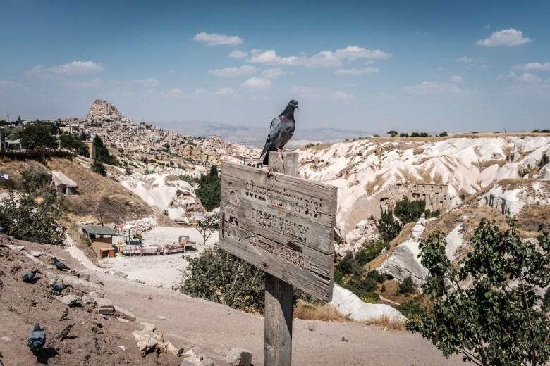 Turkey Cappadocia 173