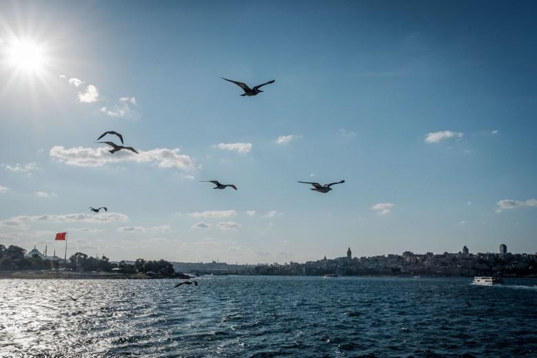 Turkey Istanbul 112