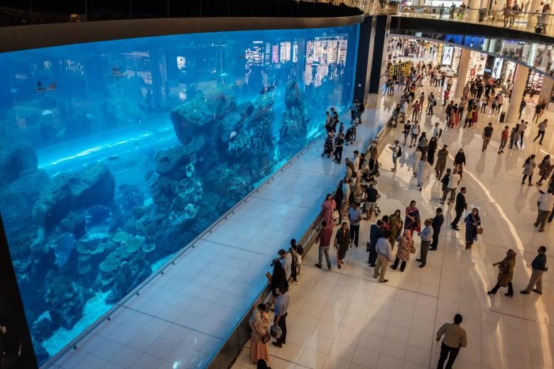 UAE Dubai 011