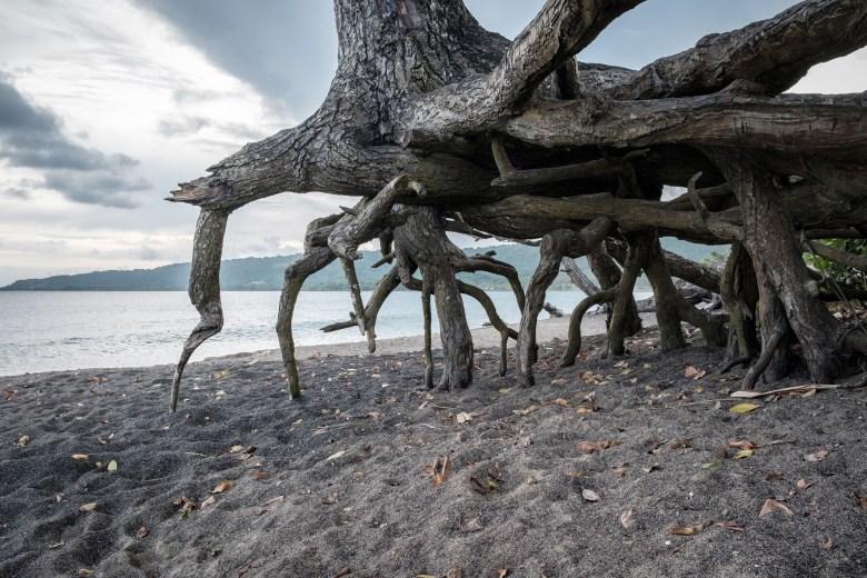 Vanuatu Efate 047