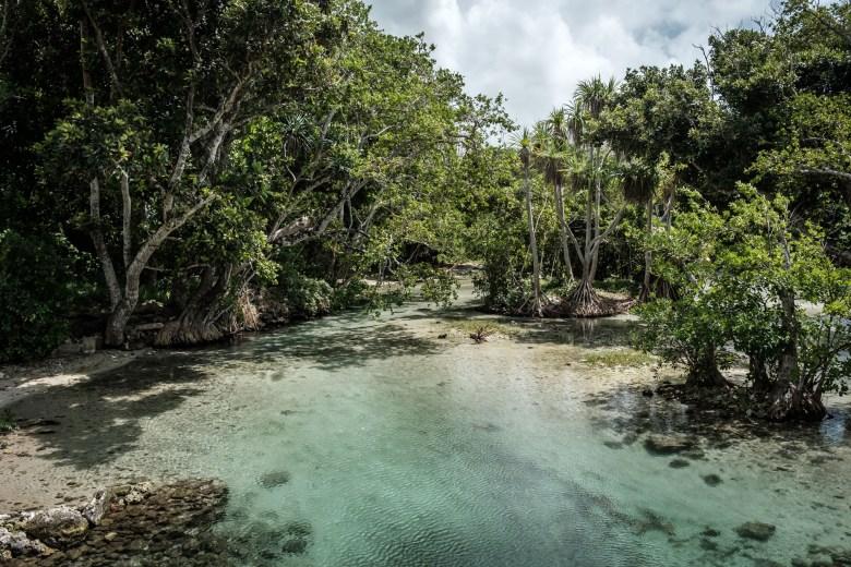 Vanuatu Efate 100