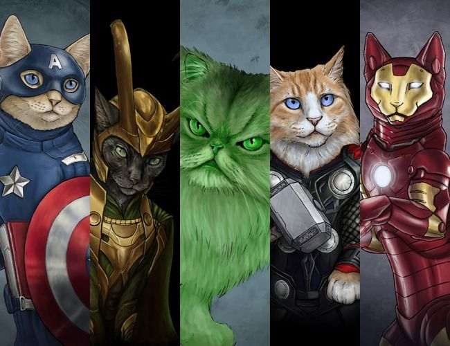 Cute Fat Cat Wallpaper Cats As Superheroes By Artist Jenny Parks The Wondrous