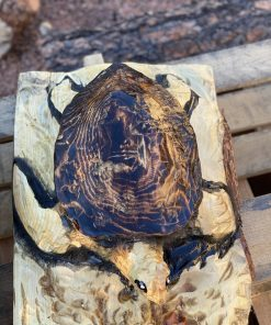 sea turtle chainsaw carving