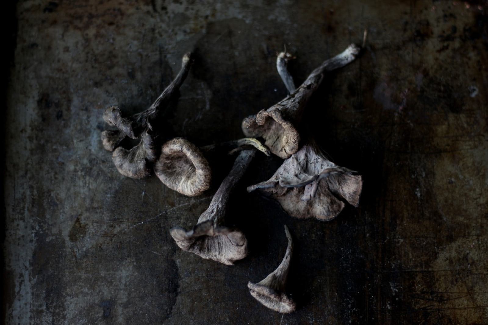 Fresh Black Trumpet Mushrooms. Food photography and food styling. thewoodenskillet.com