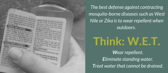 Think WET Mosquito Blog