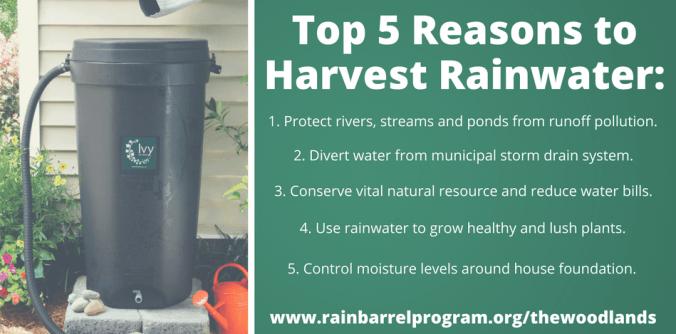 Top 5 Reasons to Harvest Rainwater-