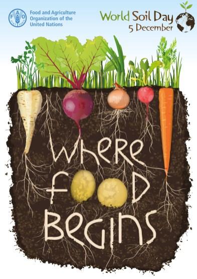 World Soil Day Poster