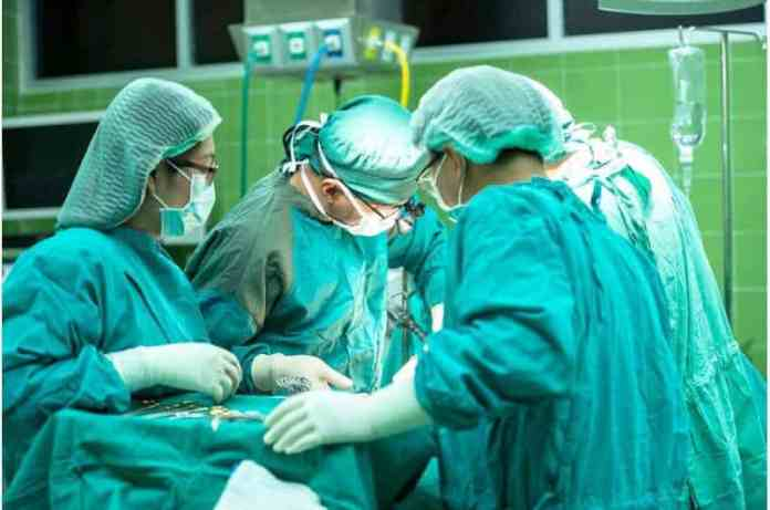 First-ever Human trachea transplant gives woman new lease on life