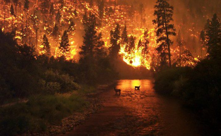 Wildfires And Climate Change Cause High Seasonal Effect In The West US
