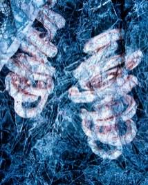 lungs, digital, Paul Neale