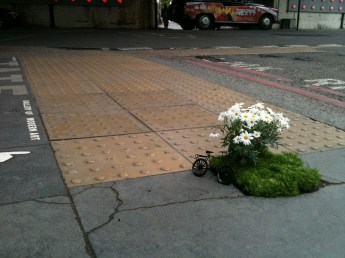 miniature bike with daisies in a pothole