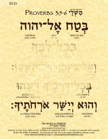 proverbs3_5_6_hebrew_V_ECO_web_2021