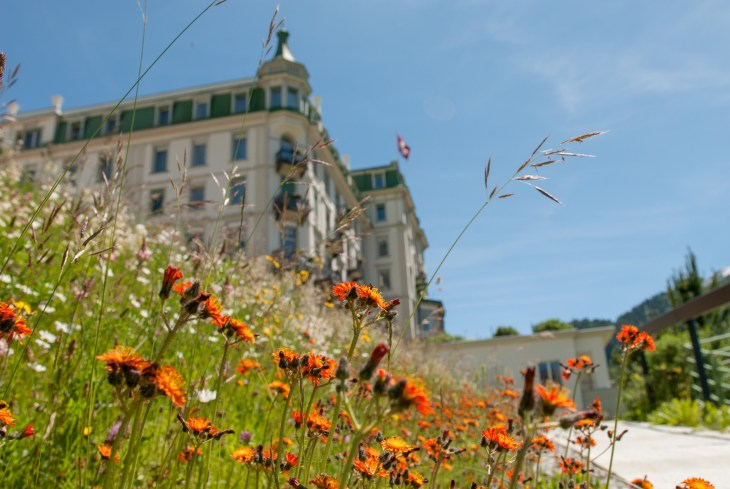 Grand Hotel Kronenhof - exterior summer