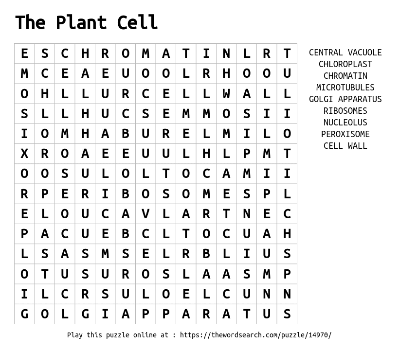 Download Word Search on The Plant Cell