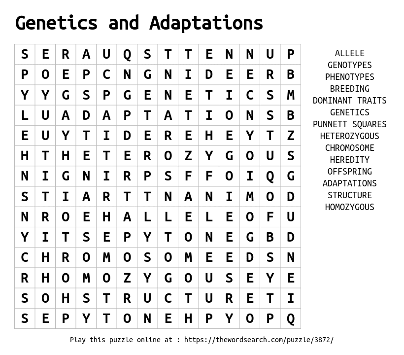 Download Word Search on Genetics and Adaptations