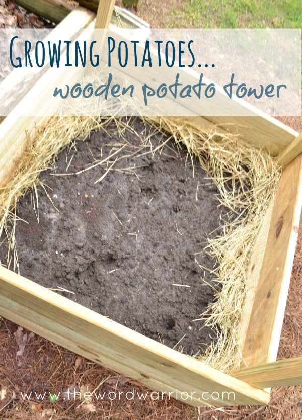 Blog - WW-Farm Life-potato-wooden-tower