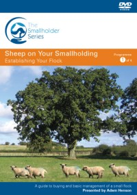 Front cover of Establishing Your Flock - a DVD for sheep keepers