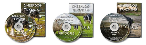 Cover pictures of volumes one, two and three of our sheep and cattle dog training dvds