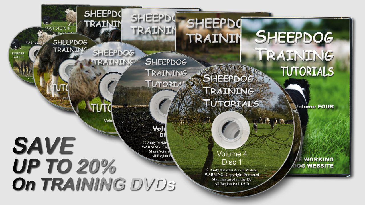 Picture showing the five DVDs on special offer