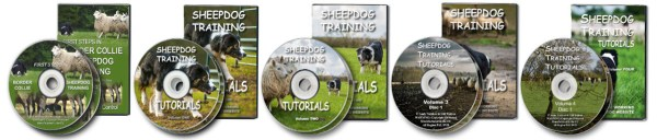 Sheepdog training DVDs - covers and discs