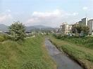 suwon stream 2