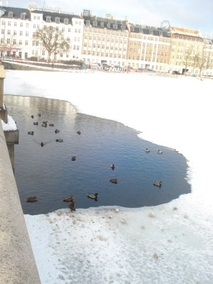 Frozen lake Copenhagen