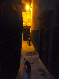 Entrance of Riad Dar Eliane