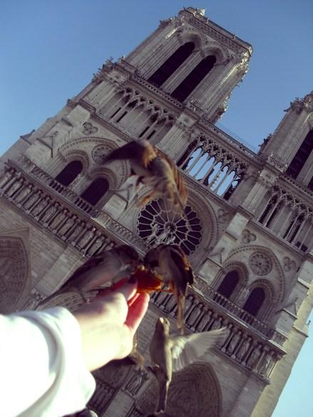 58 - Notre Dame (4)