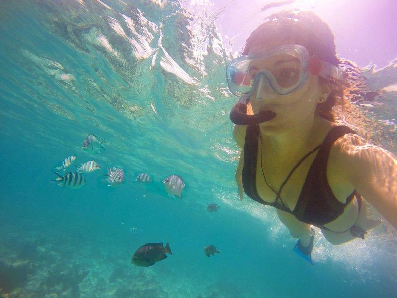 Snorkeling Zanzibar Mnemba Island