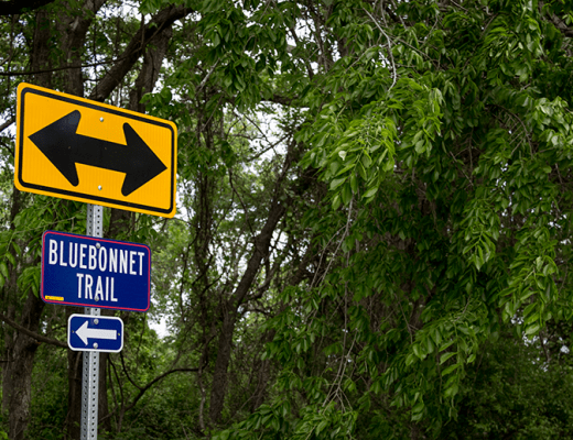 Ennis Bluebonnet Trail sign