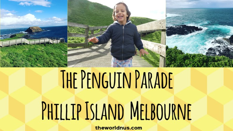 Travel with Kids - Penguin Parade | Phillip Island Melbourne | Australia