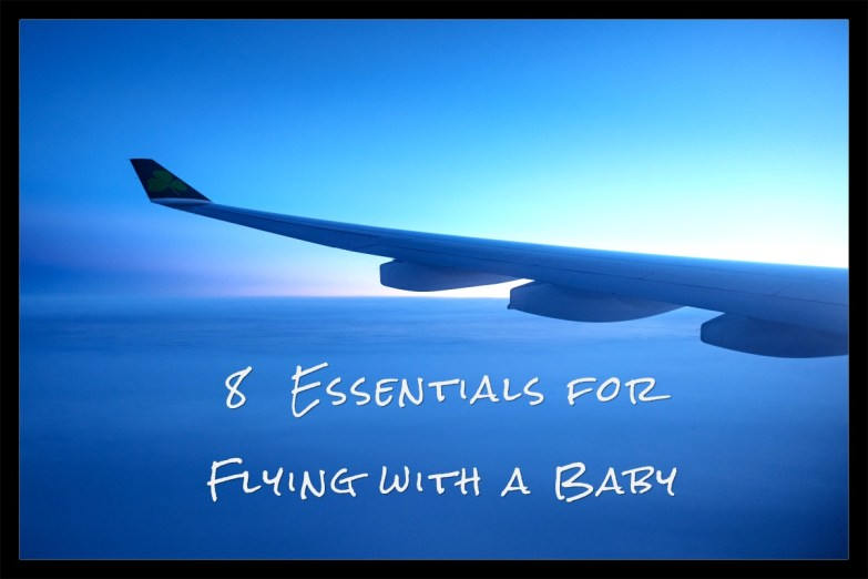 8 Essential Items for Fying with a baby, travel with baby, baby travel must haves