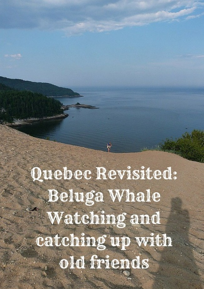 Quebec Revisited_ Beluga Whale Watching and catching up with old friends