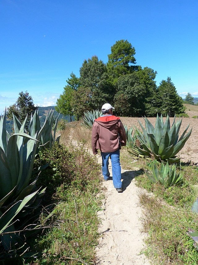 Hiking with our local guide in Mexico's Sierra Norte Mountains