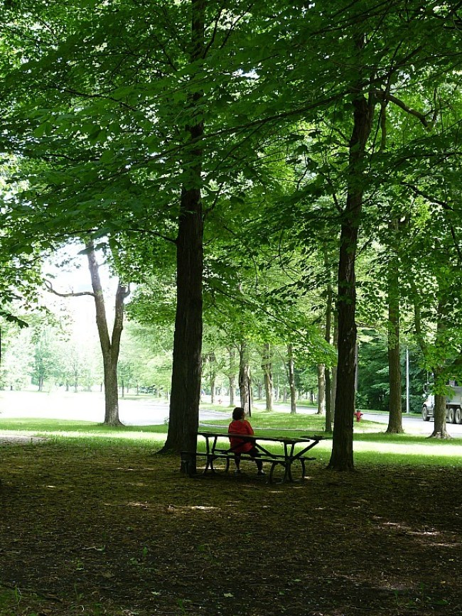 A green park in Montreal, Quebec
