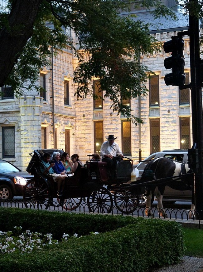 Horse and carriage in Chicago