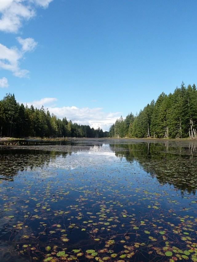 Kayaking on a lake on Denman Island in Canada