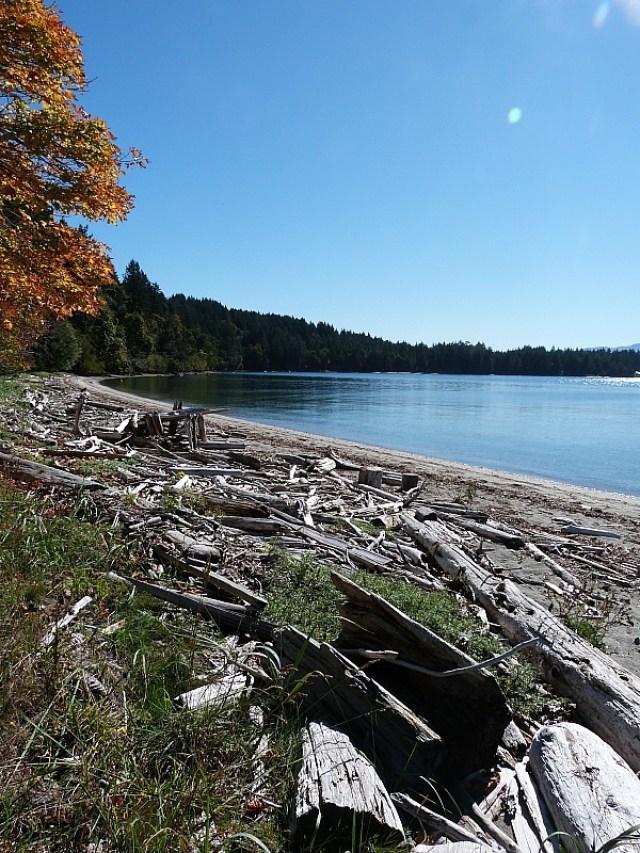 The Coast on Denman Island in Canada
