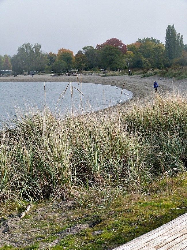 Jericho Beach in Kitsilano, Vancouver during Fall