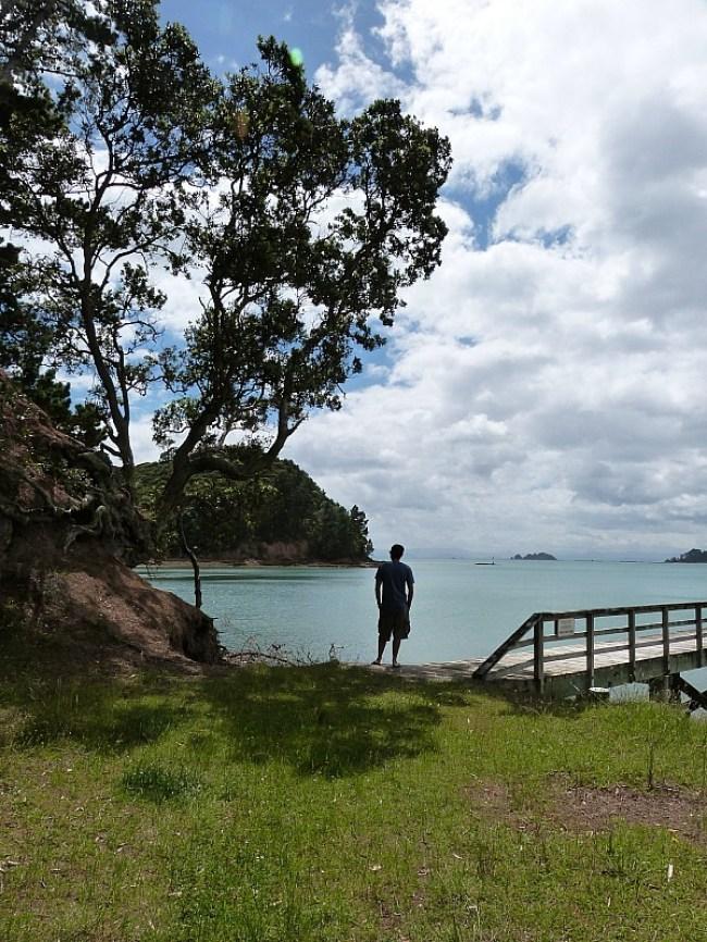 Beautiful coastline on Waiheke Island in New Zealand