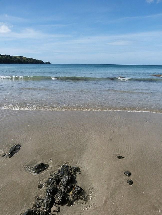 Oneroa Beach on Waiheke Island in New Zealand