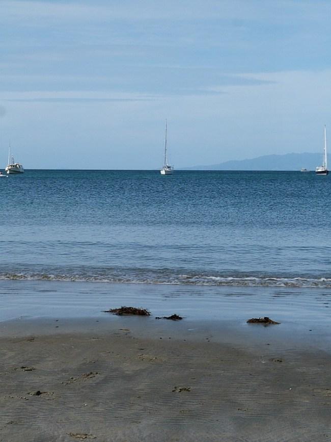 Beautiful beaches on Waiheke Island