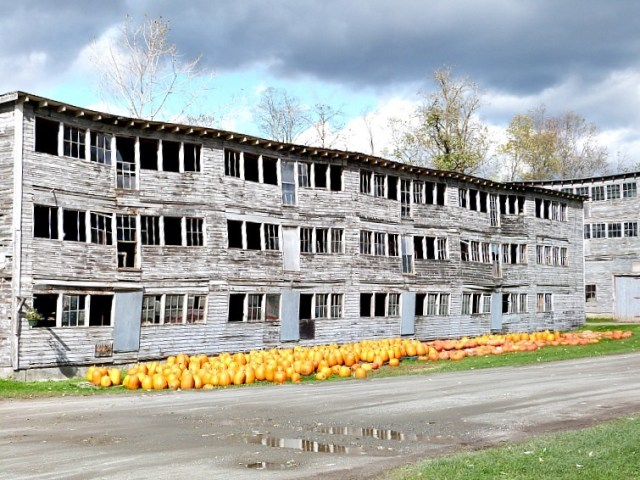 Pumpkins for sale in New England - one of the reasons to experience fall in North America