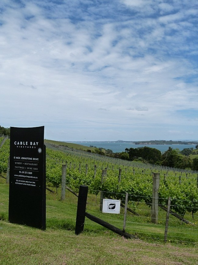 Exploring the wineries of Waiheke Island - one of the best day trips from Auckland city