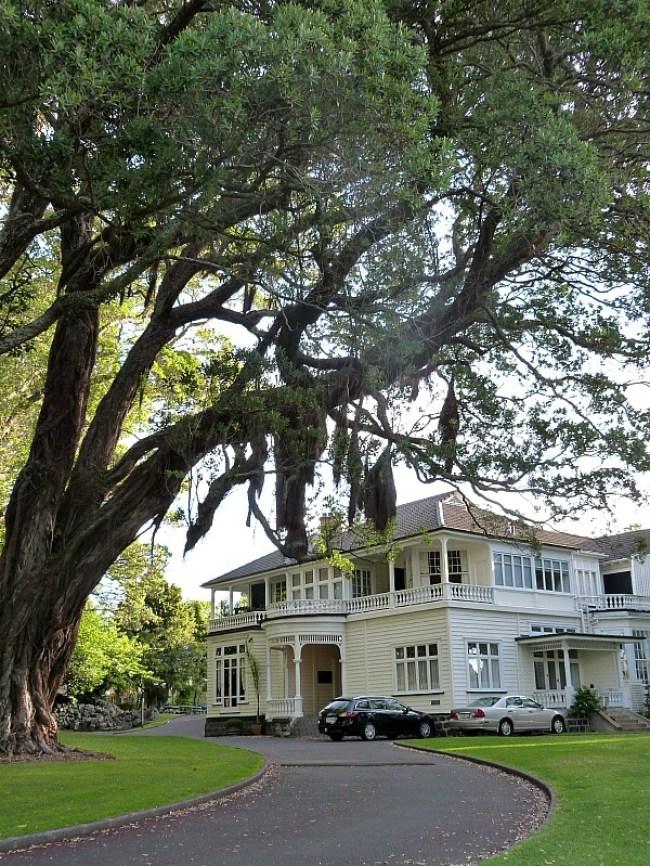 Exploring Mount Eden is one of the best Auckland Activities